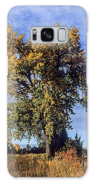 Cottonwood #3 Colorado Ranch Country In Fall Galaxy Case