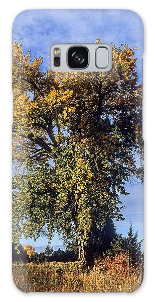 Cottonwood #3 Colorado Ranch Country In Fall Galaxy Case