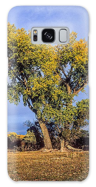 Cottonwood #4 Fall Ranch Colorado Galaxy Case