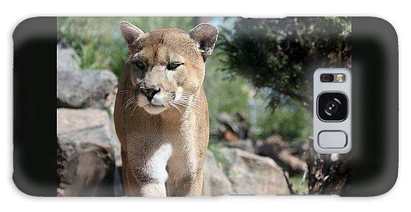 Cougar Galaxy Case