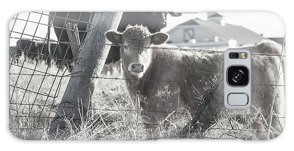 Country Living For These Cows Galaxy Case by Toni Hopper