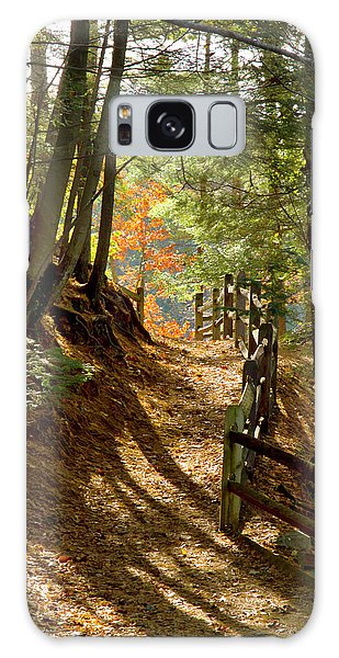 Country Path Galaxy Case
