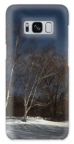 Country Roadside Birch Galaxy Case
