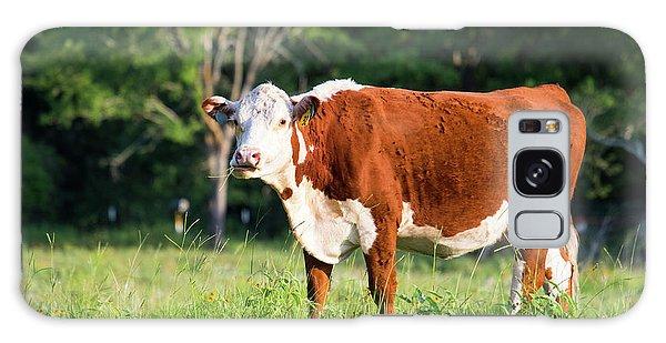 Cow #1 Galaxy Case