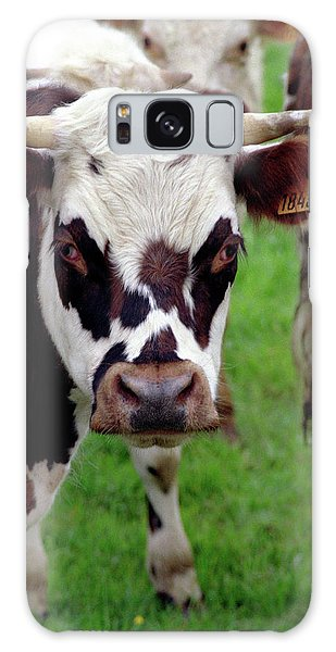 Cow Closeup Galaxy Case