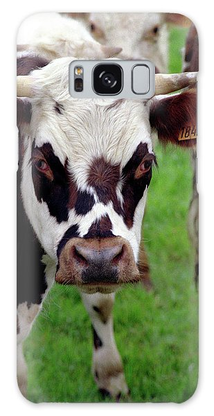 Galaxy Case featuring the photograph Cow Closeup by Frank DiMarco