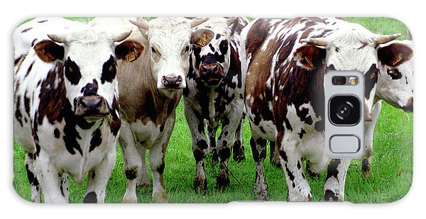 Cow Group Galaxy Case