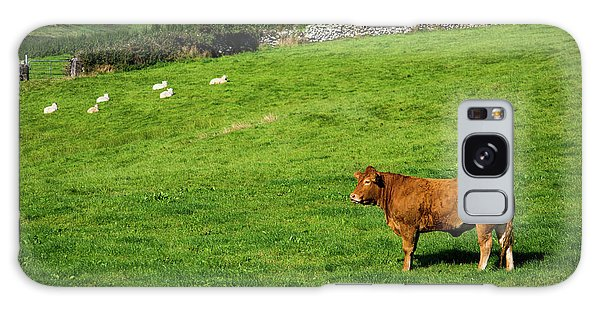 Cow In Pasture Galaxy Case