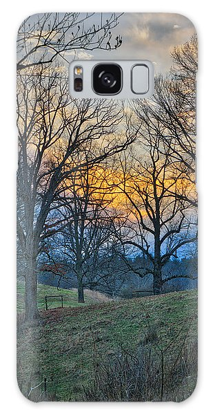 Cow Pasture At Dusk Galaxy Case
