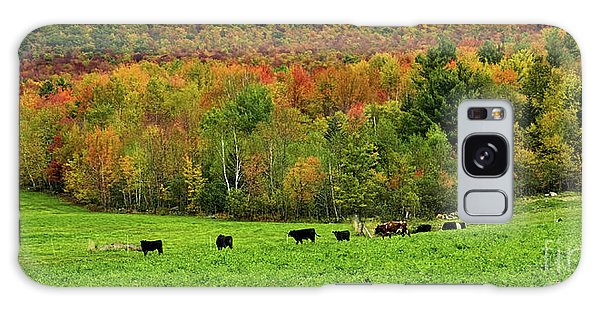 Cow Pasture In Fall Galaxy Case