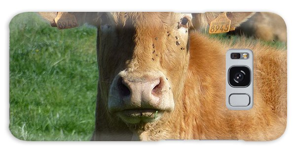 Cow Portrait Galaxy Case by Jean Bernard Roussilhe