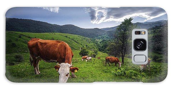 Cows Galaxy Case