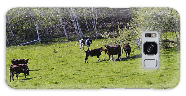 Cows In A Pasture Galaxy Case
