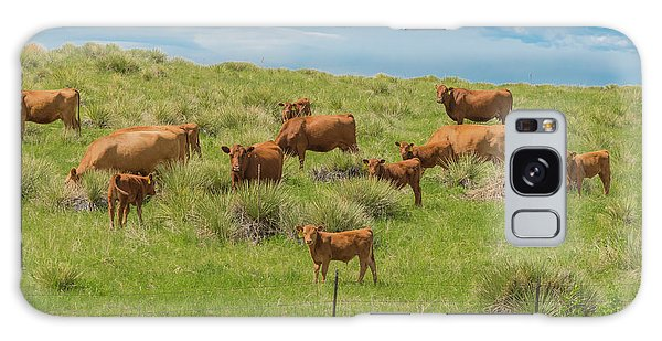 Cows In Field 1 Galaxy Case