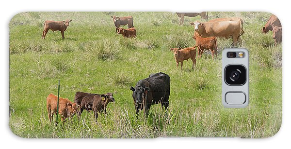 Cows In Field 2 Galaxy Case