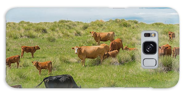 Cows In Field 3 Galaxy Case