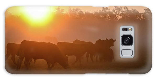Cows In The Sunrise Mist Galaxy Case