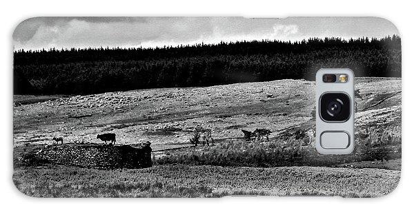 Cows On A Wall Galaxy Case