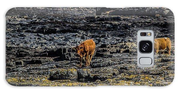 Cows On The Rocks Galaxy Case