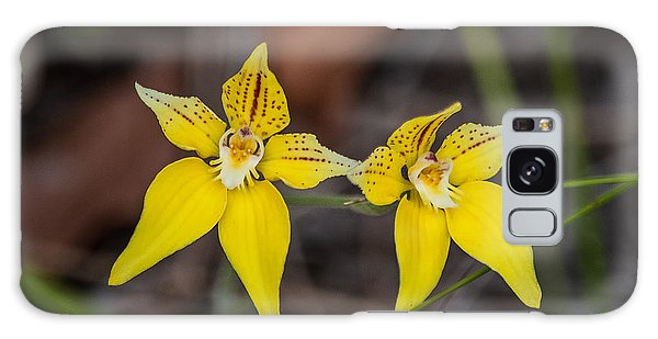 Cowslip Orchid Australia Galaxy Case
