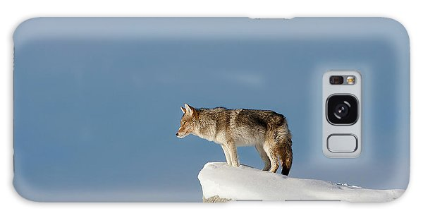 Coyote At Overlook Galaxy Case