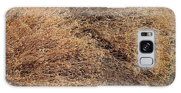 Coyote Brush Galaxy Case
