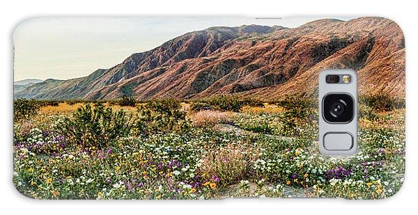 Coyote Canyon Sweet Light Galaxy Case by Daniel Hebard