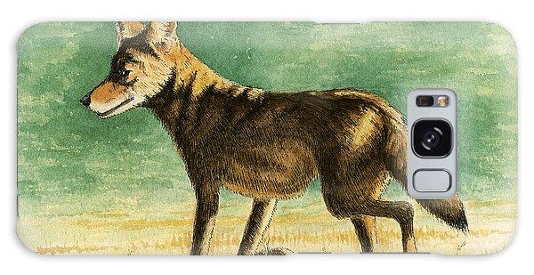 Coyote Galaxy Case