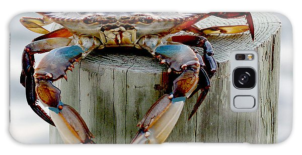 Crab Hanging Out Galaxy Case