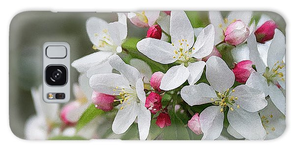 Crabapple Blossoms 12 - Galaxy Case