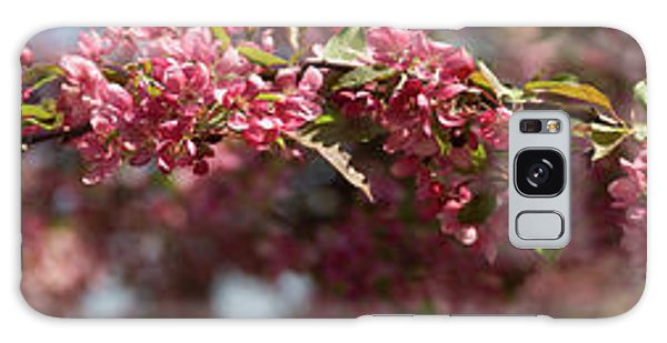 Crabapple In Spring Panoramic Galaxy Case