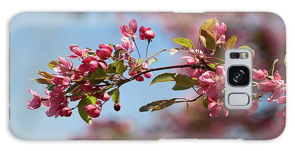 Crabapple In Spring Section 1 Of 4 Galaxy Case