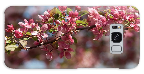 Crabapple In Spring Section 2 Of 4 Galaxy Case