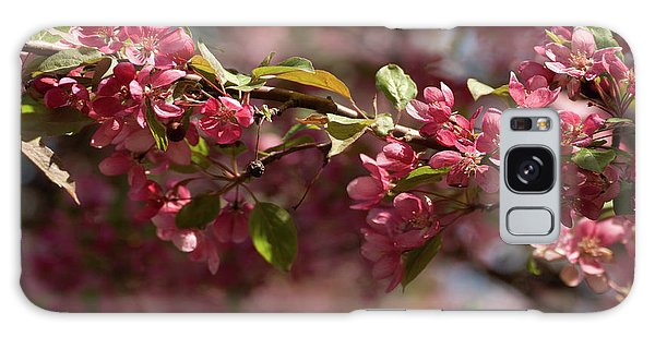 Crabapple In Spring Section 3 Of 4 Galaxy Case