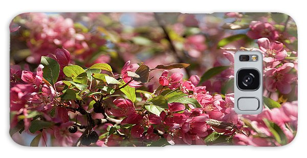 Crabapple In Spring Section 4 Of 4 Galaxy Case