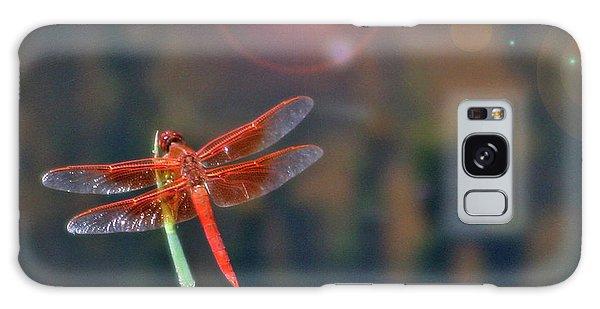 Crackerjack Dragonfly Galaxy Case