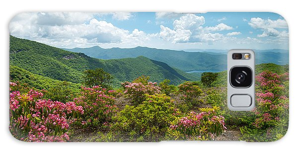 Craggy Gardens Blue Ridge Parkway Stunning Vista Galaxy Case