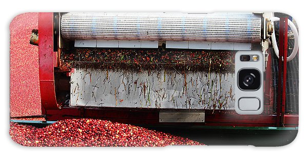 Cranberry Harvest Galaxy Case