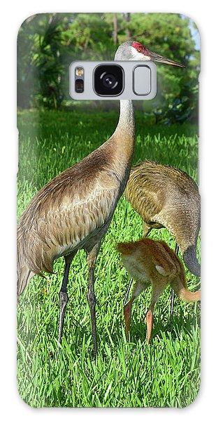 Crane Family Picnic Galaxy Case