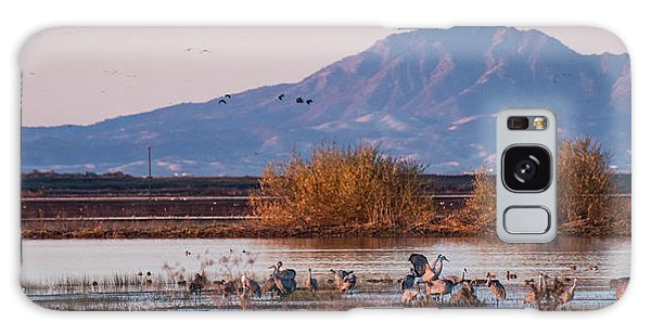 Cranes In The Morning Galaxy Case