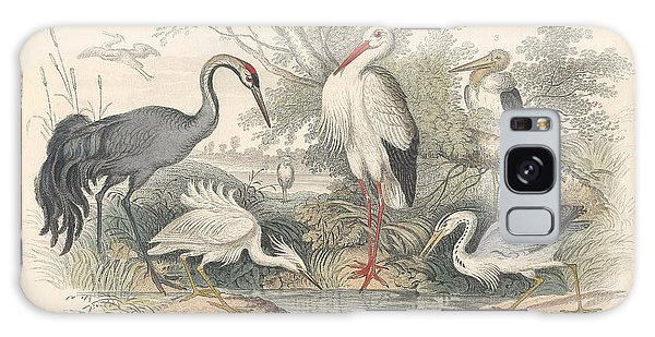 Cranes Galaxy Case by Dreyer Wildlife Print Collections