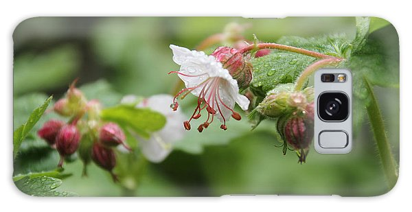 Cranesbill Raindrops Galaxy Case