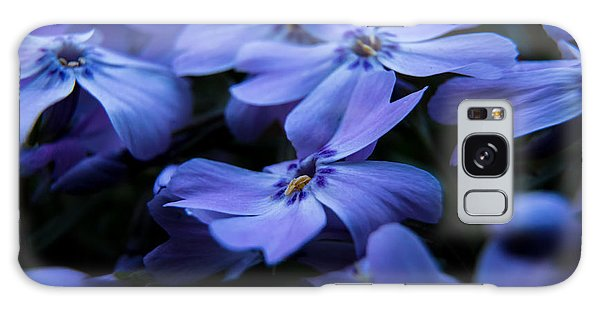 Creeping Phlox Galaxy Case by Jay Stockhaus