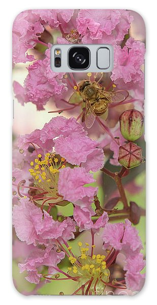 Crepe Myrtle And Bee Galaxy Case by Olga Hamilton