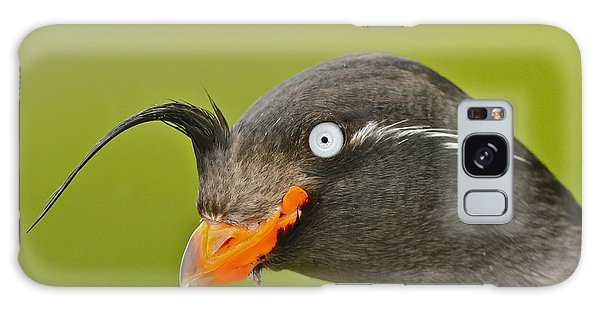 Crested Auklet Galaxy Case