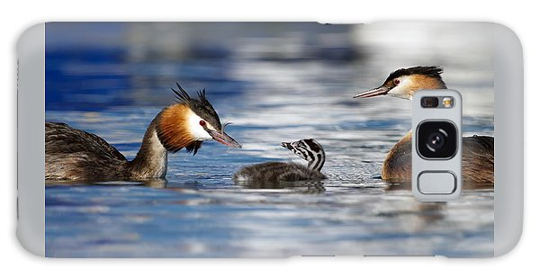 Crested Grebe, Podiceps Cristatus, Ducks Family Galaxy Case by Elenarts - Elena Duvernay photo