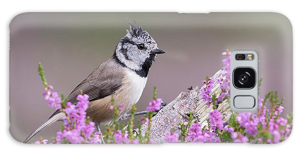 Crested Tit In Heather Galaxy Case