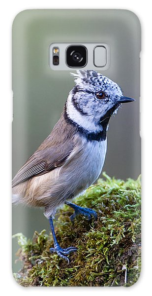Crested Tit Galaxy Case