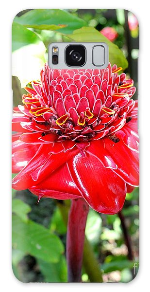 Crimson Bloom Galaxy Case
