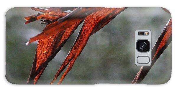 Crimson Leaf In The Amazon Rainforest Galaxy Case